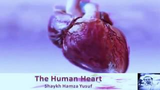 The Human Heart   Shaykh Hamza Yusuf - #thechoice