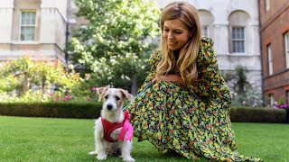 video: Boris Johnson and Carrie Symonds welcome puppy Dilyn into Downing Street