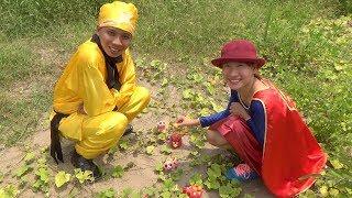 Các Con Vật Đi Hái Hoa Quả – ANIMALS PICKING FRUIT ❤ BIBI TV ❤