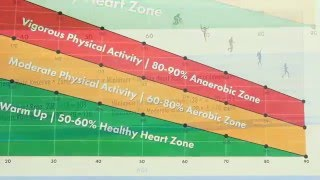 Physical Activity Heart Rate Chart for Students