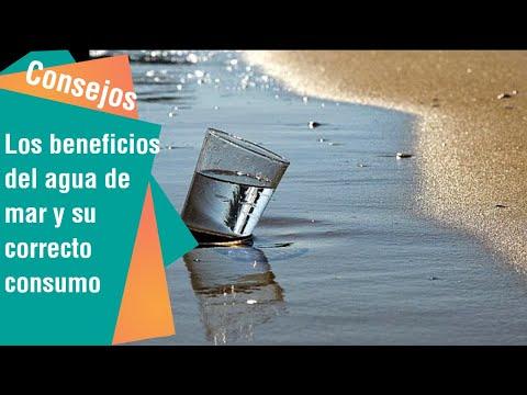 Los beneficios del agua de mar y como beberla correctamente   Consejos para usted