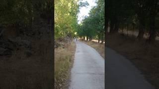 Video del alojamiento El Calderillo