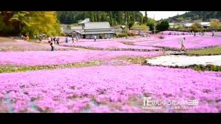 芝桜/花のじゅうたんin三田/観光スポット