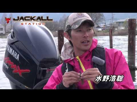 春爆している琵琶湖を解説