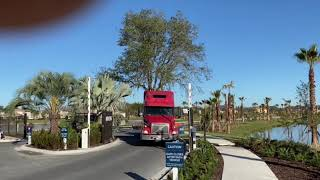 50′ Live Oak Transplant on Semi Trailer