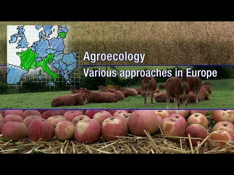Agroecology, various approaches in Europe.