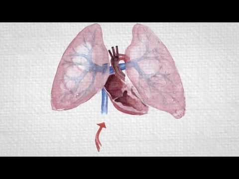 Παρακολουθήστε με την αρτηριακή πίεση και τον καρδιακό ρυθμό