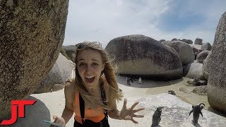Boulders Beach, Cape Town