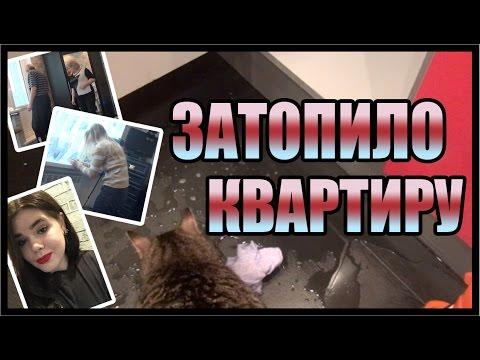 ЗАТОПИЛО КВАРТИРУ | Мимилетная неделя №11