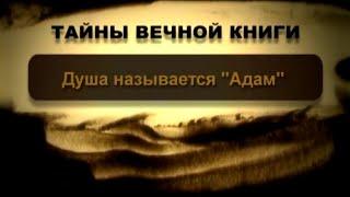 Душа называется «Адам». Трума, передача 3