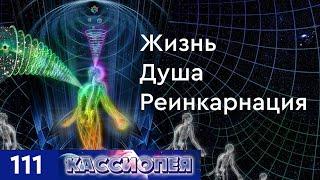 Жизнь, душа и реинкарнация. Триединство природы духа: разум, сердце, энергия. #111