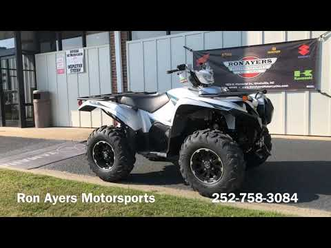 2020 Yamaha Grizzly EPS SE in Greenville, North Carolina - Video 1