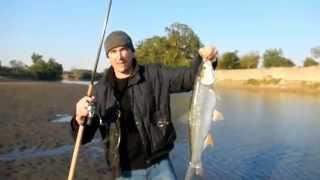 Рыбалка | Ловля жереха осенью!