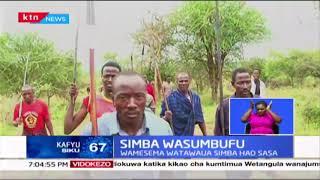 Simba wasumbufu :Wenyeji wa Kajiado wawasaka simba kwa madai ya kuwala mifugo wao
