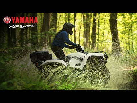 2018 Yamaha Grizzly EPS LE in Port Washington, Wisconsin