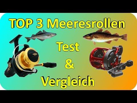 Meeresrollen  TEST & Vergleich | Top 3 Meeresrollen Testbericht/Kaufempfehlung