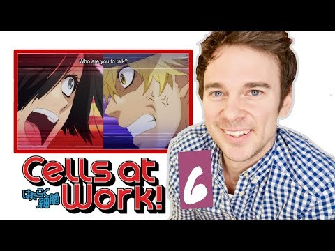 "Real DOCTOR reacts to CELLS AT WORK! // Episode 6 // ""Erythroblasts and Myelocytes"""