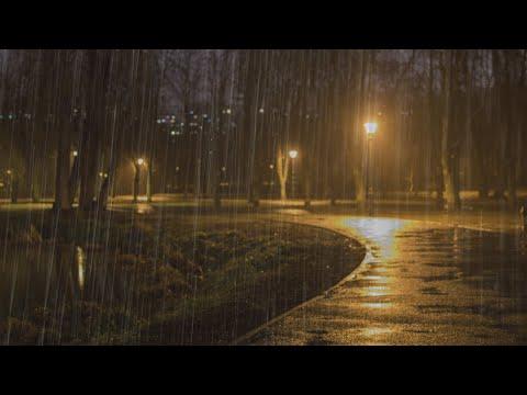Schlafen Sie sofort mit Regen & Gewittergeräusche die den Park nachts bedecken - Naturgeräusche