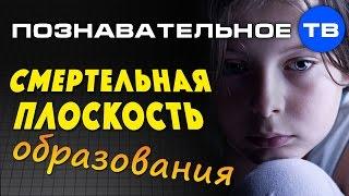 Смертельная плоскость образования (Познавательное ТВ, Владимир Базарный)