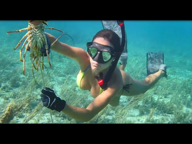Spearfishing & lobstering in Grand Bahama!
