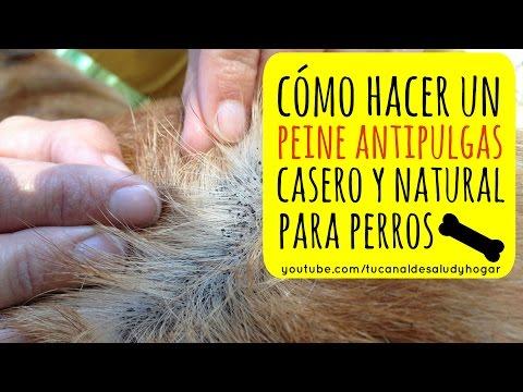 Peine Antipulgas para Perros