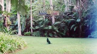 Matt Corby   Rainbow Valley (Official Audio)