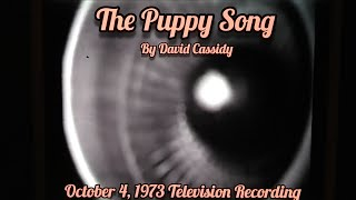 """""""The Puppy Song""""by David Cassidy"""
