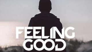 Avicii - Feeling Good