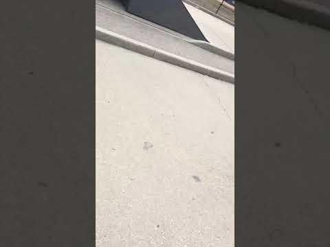 Crazy Guy Chasing Us
