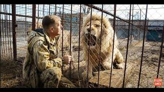 БЕЛЫЙ  ЛЕВ  РИЧАРД ,который считает что он главнее  Олега ЗУБКОВА . Тайган.Крым