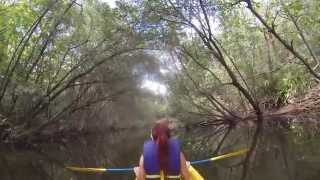 preview picture of video 'Kayaking reserva natural de humacao'