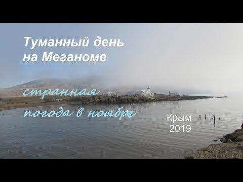 Крым, Судак, на море туманы в ноябре. Загадочный Меганом, дельфины и бакланы в тумане