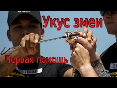 La codificazione da alcolismo su dovzhenko in Rostov