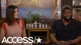 Sandra Bullock Jokes She 'Went To The Meryl [Streep] School Of River Rafting' For 'Bird Box' Scene