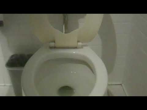 5294: 1986-1993 American Standard Neolo Toilet
