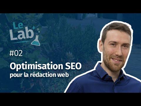 Optimisation SEO pour la rédaction web