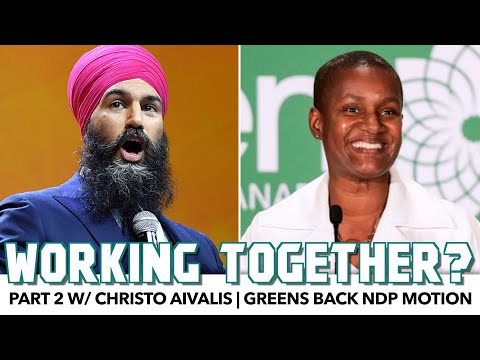 Greens Back NDP Motion For Wealth Tax | Pt.2 w/ Christo Aivalis