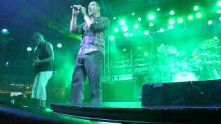 311 Cruise 2015 - Who's Got The Herb?