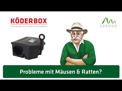 Köderbox für Mäuse und Ratten von Gardigo