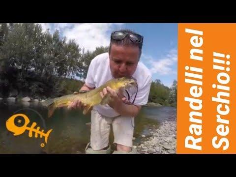 La pesca e riposo in Ucraina