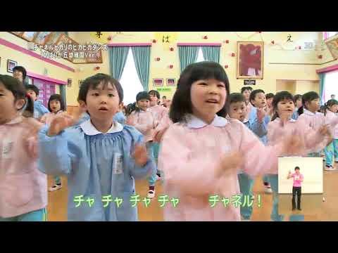 チャネルヒカリのピカピカダンス ひばりが丘幼稚園Ver.