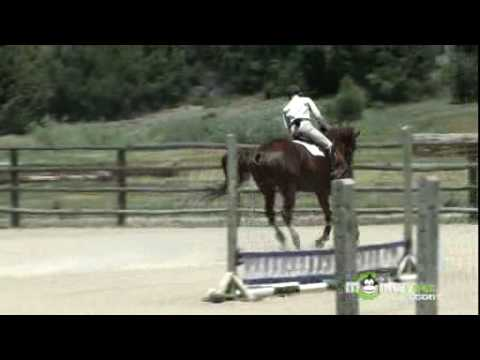 How To Become An Olympic Equestrian Jumping Athlete