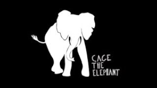 Cage The Elephant - Ain't No Rest For The Wicked video
