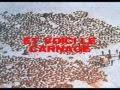 __# Petition -Stop à la chasse aux phoques !
