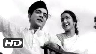 Main Rangeela Pyar Ka - Bollywood Classic Hit Peppy Song