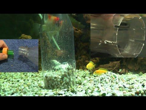 Aquarium Saugglocke selber bauen, kostet fast gar nichts