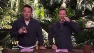 "Ant and Dec's ""Apology Time"" - I'm A Celebrity 2015"