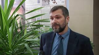 Эколог: святая Варвара не навредит Сосновому бору в Кемерове
