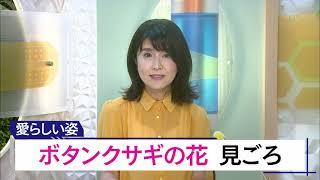 7月23日 びわ湖放送ニュース