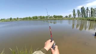 Какие снасти нужны для ловли карпа в сентябре на озере